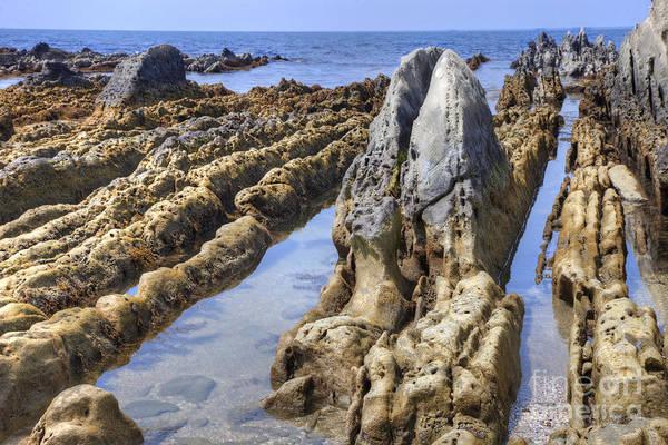 Photograph - Ebb Tide-3 by Tad Kanazaki