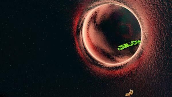 Ebola Photograph - Ebola Virus Particle by Karsten Schneider