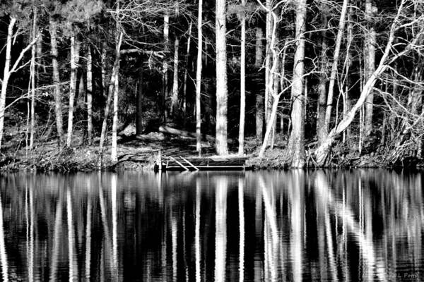 Conyers Photograph - Echoing Trees by Tara Potts