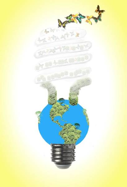 Photograph - Eco Light Bulb  by Rudy Umans