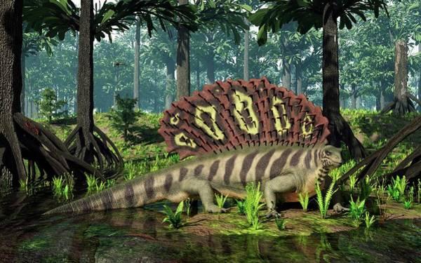 Arthropods Wall Art - Photograph - Edaphosaurus Amidst Cordaites by Walter Myers