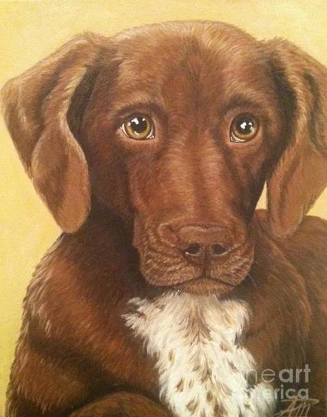 Painting - Eddie by Ana Marusich-Zanor