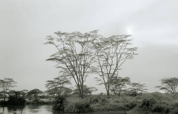 Photograph - Eden by Shaun Higson