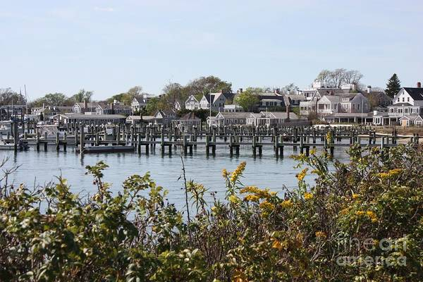 Photograph - Edgartown Harbor With Wildflowers by Carol Groenen