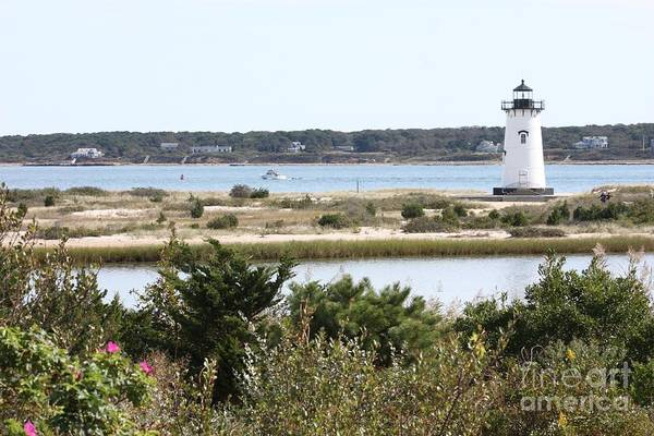 Photograph - Edgartown Lighthouse With Wildflowers by Carol Groenen
