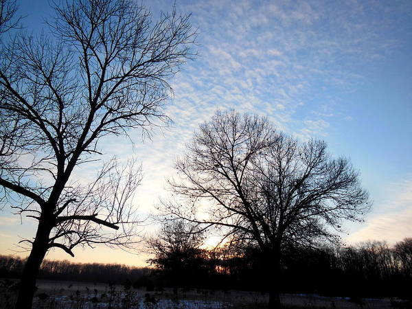 Photograph - Reduced  Edge Of Morning by Wild Thing