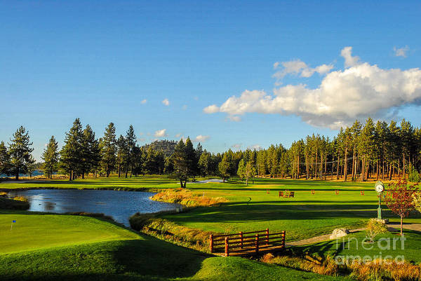 Wall Art - Photograph - Edgewood Golf Club At Sunset by Paul Quinn
