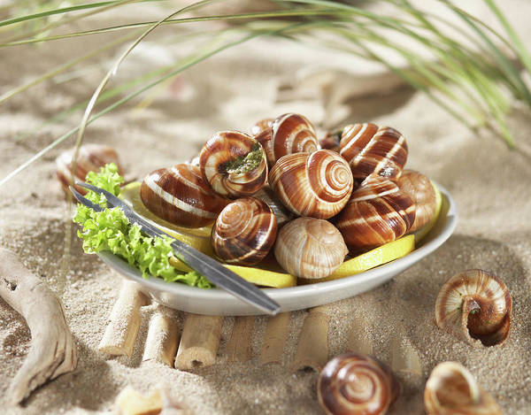 Wall Art - Photograph - Edible Snails With Salad And Lemon In by Westend61