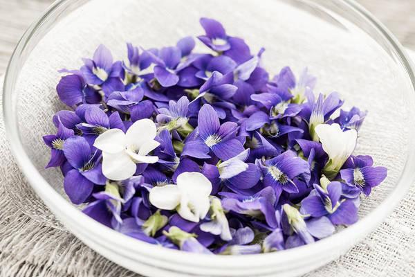 Edible Photograph - Edible Violets In Bowl by Elena Elisseeva