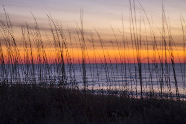 Photograph - Edisto Beach Sunrise 01 by Jim Dollar