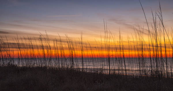 Photograph - Edisto Beach Sunrise 02 by Jim Dollar