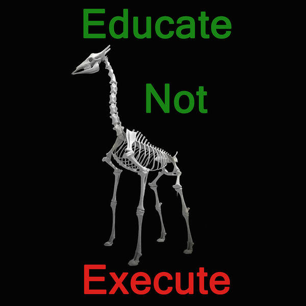 Photograph - Educate Not Execute by Eric Kempson