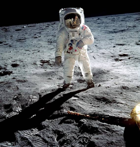 Wall Art - Photograph - Edwin 'buzz' Aldrin On The Moon by Nasa/science Photo Library