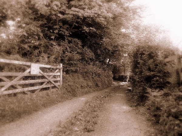 Wall Art - Photograph - Eerie Lane Monmouth Wales by Andrew Read