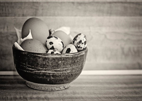 Photograph - Egg Bowl Bw by Heather Applegate