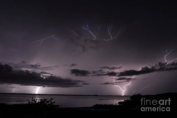 Electric Storm Photograph - Egg Shell by Quinn Sedam