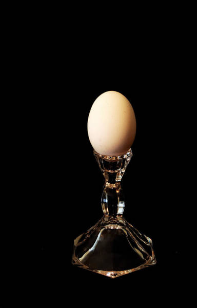 Photograph - Egg Stand by Steven Milner