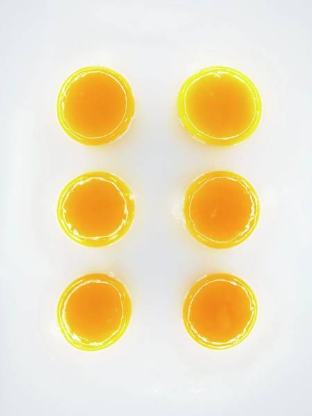 Yolk Wall Art - Photograph - Egg Yolks by Patrick Llewelyn-davies/science Photo Library