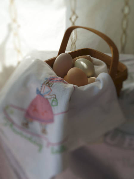 Photograph - Eggs In A Basket 1 by MM Anderson