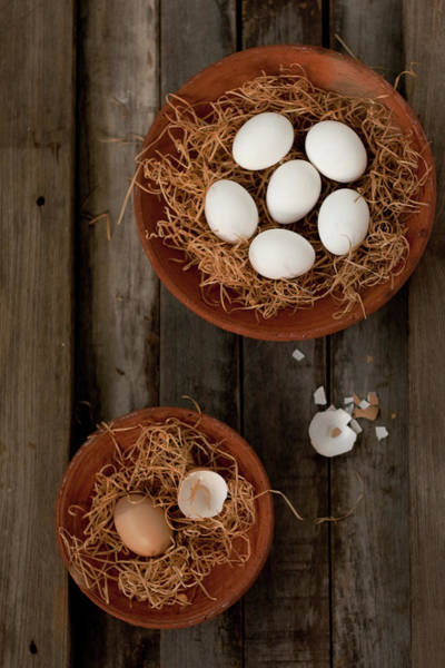 Fragility Photograph - Eggs In Hay by Ashasathees Photography