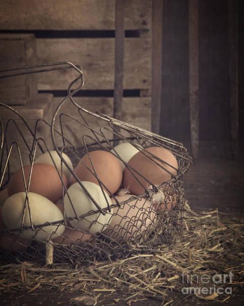 Wall Art - Photograph - Eggs In Vintage Wire Egg Basket by Edward Fielding