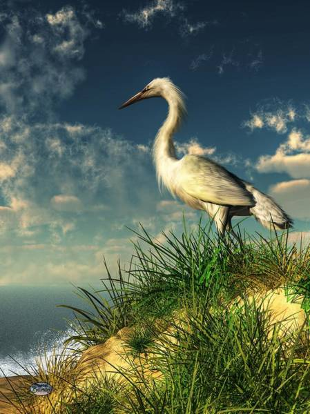 Digital Art - Egret In The Dunes by Daniel Eskridge