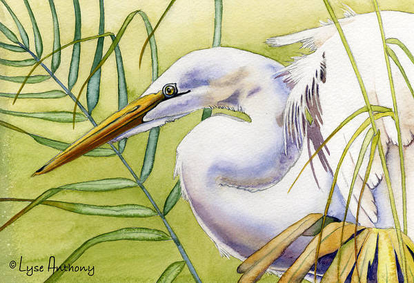 Wall Art - Painting - Egret by Lyse Anthony