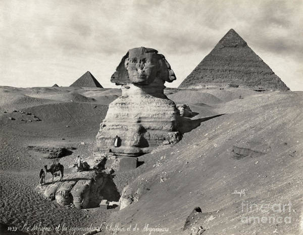 Photograph - Egypt: Pyramids And Sphinx by Granger