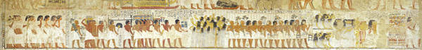 Hieroglyph Photograph - Egyptian Hieroglyphs On The Wall, Tomb by Panoramic Images
