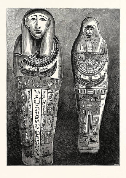 Mummy Drawing - Egyptian Mummy And Case In The British Museum by Egyptian School