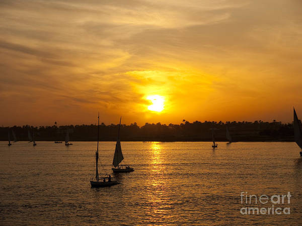 Photograph - Egyptian Sunset by Brenda Kean