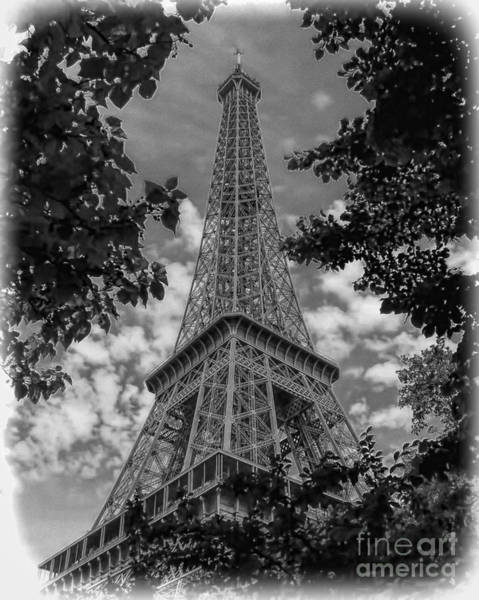 Photograph - Eiffel Through Trees Bw by Ken Johnson