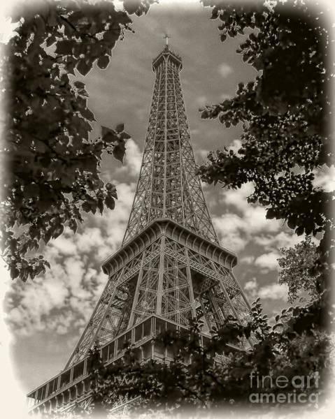 Photograph - Eiffel Through Trees Sepia by Ken Johnson