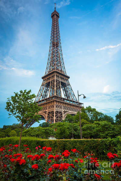 Photograph - Eiffel Tower And Red Roses by Inge Johnsson