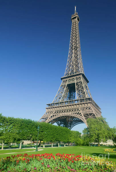 Photograph - Eiffel Tower In Spring I by Clarence Holmes