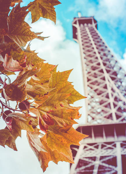 Wall Art - Photograph - Eiffel Tower In The Fall by Mr Doomits