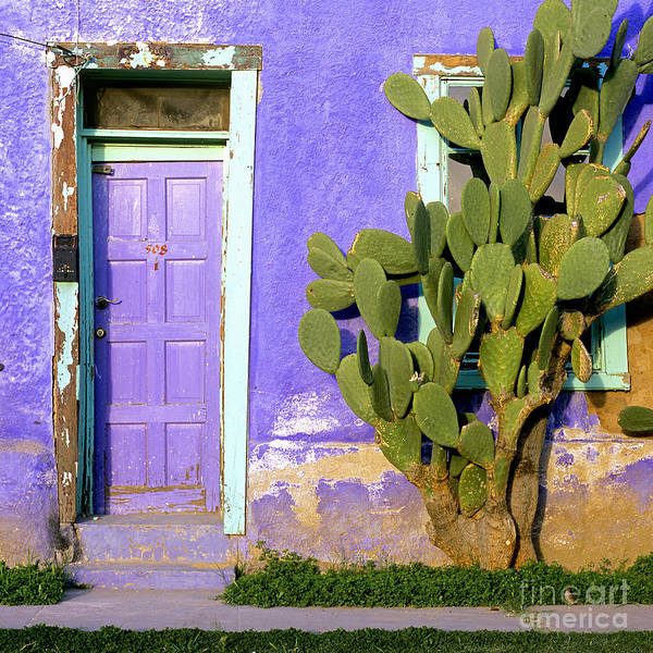 Painted Desert Photograph - El Barrio by Timm Chapman