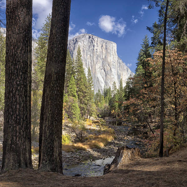 Wall Art - Photograph - El Capitan by Robert Fawcett