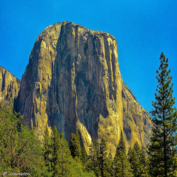 Photograph - El Capitan Yosemite National Park by Bob and Nadine Johnston