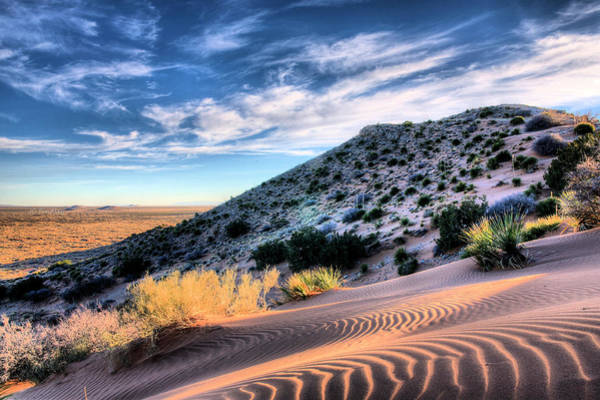 Photograph - El Paso Blue by JC Findley