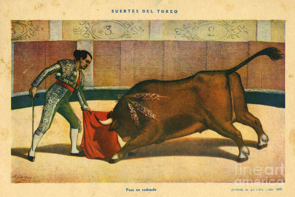 1880 Drawing - El Ruedo 1882 1880s Spain Cc Bull by The Advertising Archives