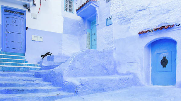 Wall Art - Photograph - El Salto by Juan Cardador