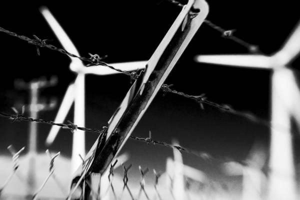 Photograph - Electric Fence Black And White by Scott Campbell