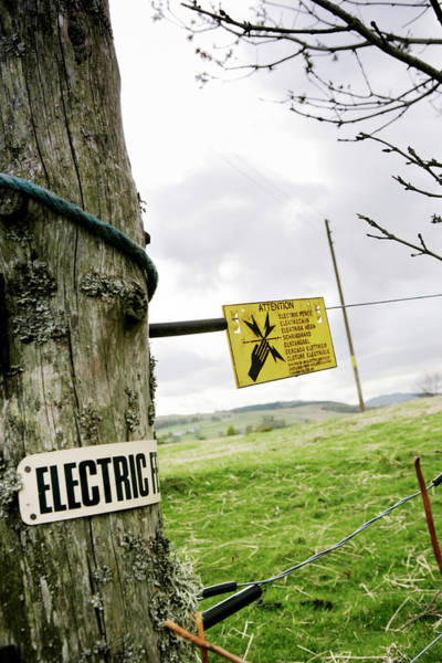Written Language Photograph - Electric Fence Warning Sign by Gustoimages/science Photo Library