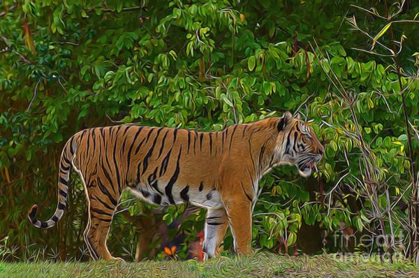 Photograph - Electric Tiger by Les Palenik