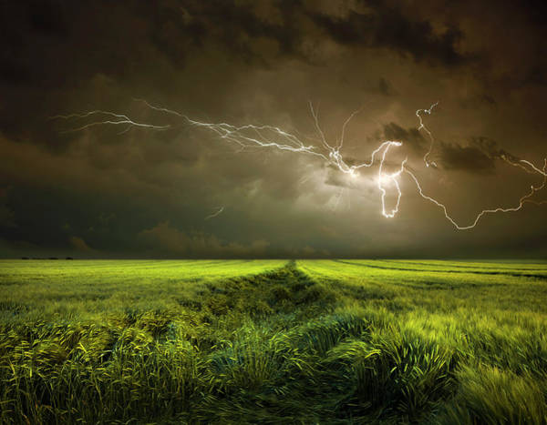 Electricity Photograph - Electrically In Summer by Franz Schumacher