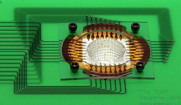 Biomimetics Wall Art - Photograph - Electronic Compound Eye Camera by Professor John Rogers, University Of Illinois