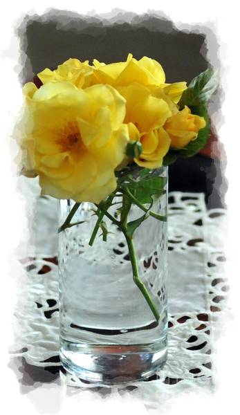 Photograph - Elegance In Yellow by Donna Bentley
