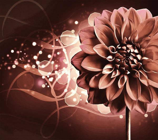 Floristry Photograph - Elegant Burning Dahlia by Georgiana Romanovna