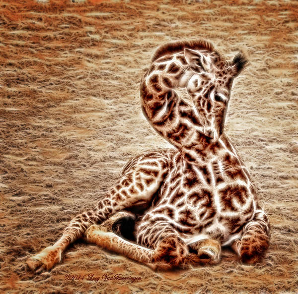 Elegant Infant Art Print